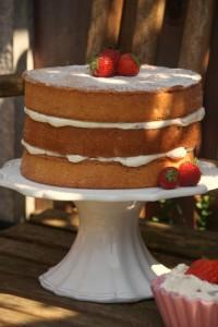 Victoria Sandwich Inside Surprise Cake 054